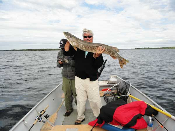 45-inch-northern-pike