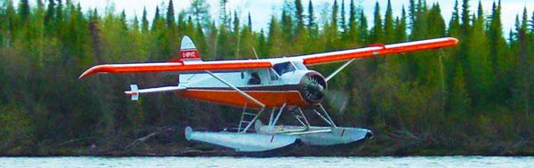 beaver-plane