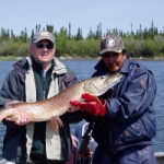 Trophy Pike - Gods Lake